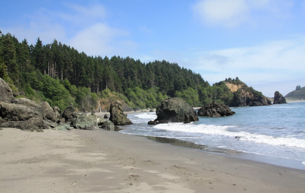 College Cove, from Trindad State Beach (photo by Susan Fox