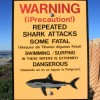 Shark attack sign california bryce (Medium)